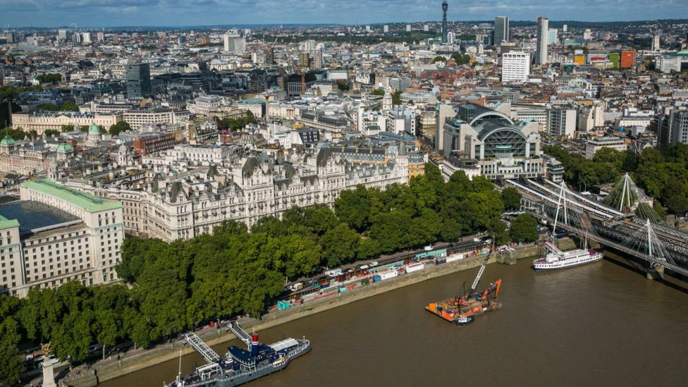 London plane trees, which line the Victoria Embankment, emit high levels of volatile organic compounds, which can be bad for urban air pollution (Credit: Getty Images)