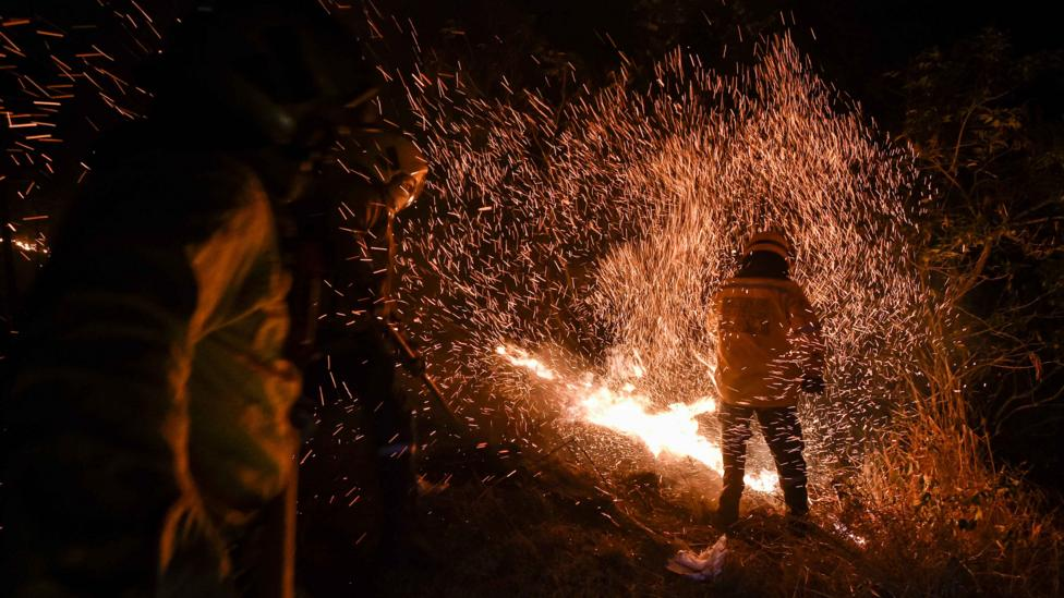 In Colombia, clearing forested regions leads to more hot spots where forest fires are highly likely to follow (Credit: Getty Images)